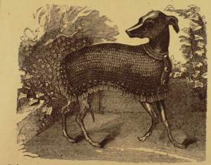 crochet jacket for a greyhound Godeys 86 5 May 1873 p 453