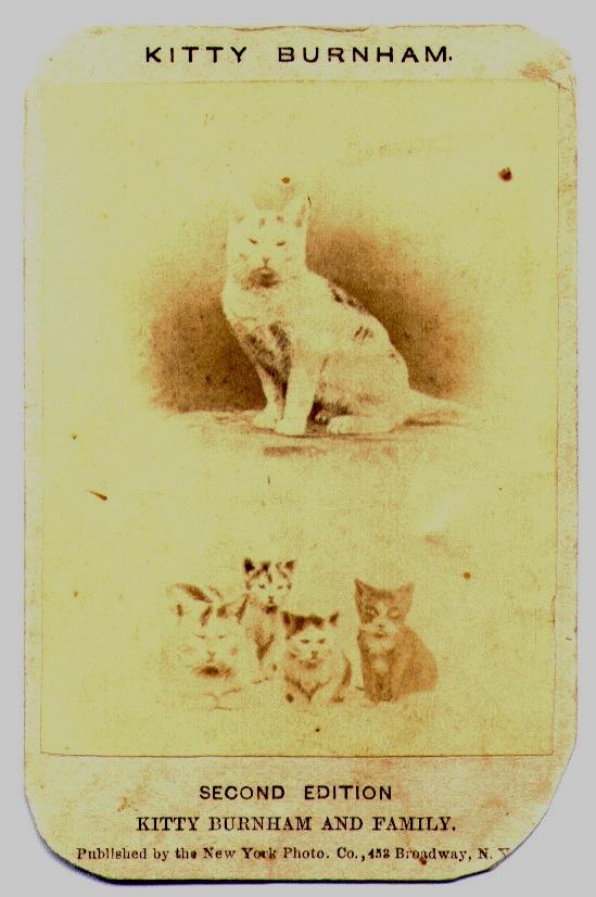 Kitty Burnham