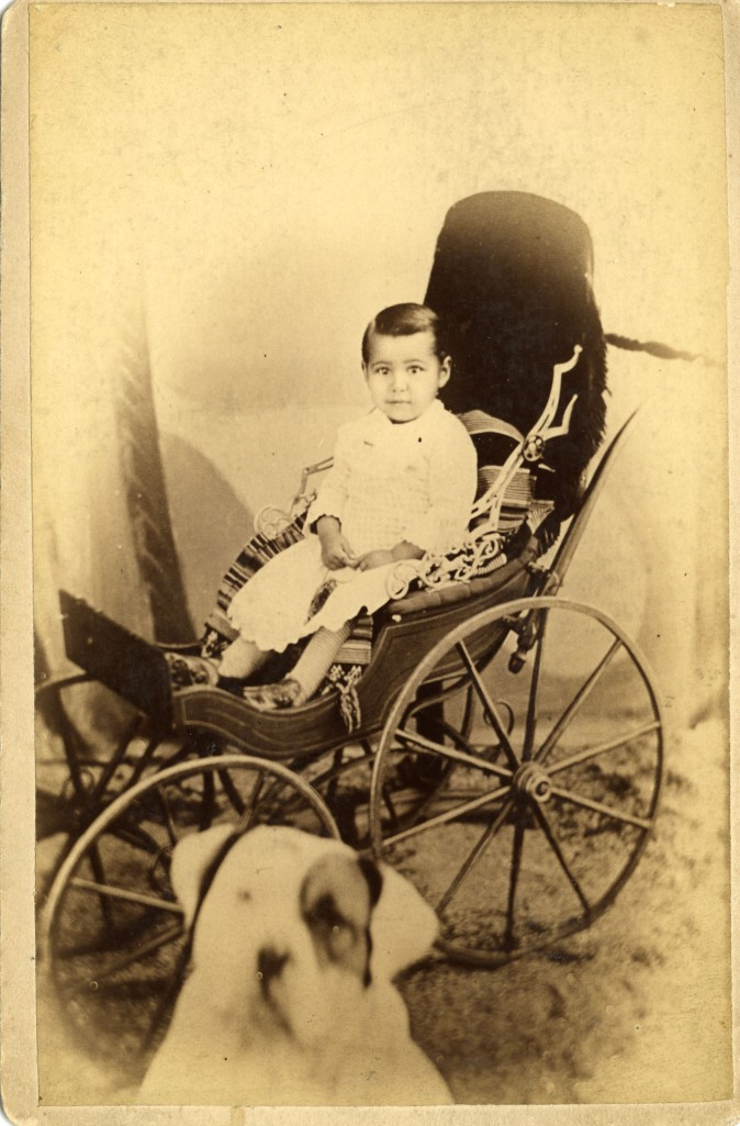 child in carriage with dog Seymour photog Jackson MI