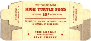 Live Turtle Box