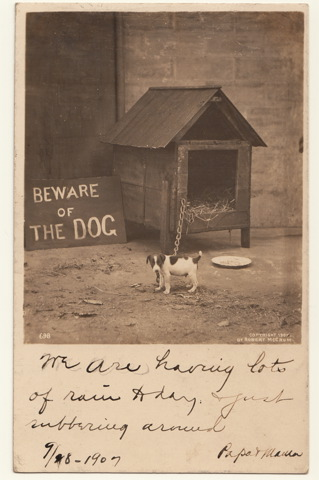 Postcard doghouse 1907
