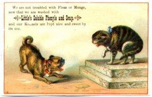littles-dog-soap