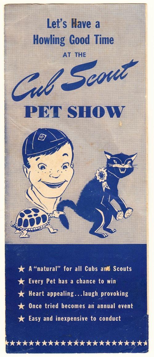 pets-blog-12-dec-2016_0004