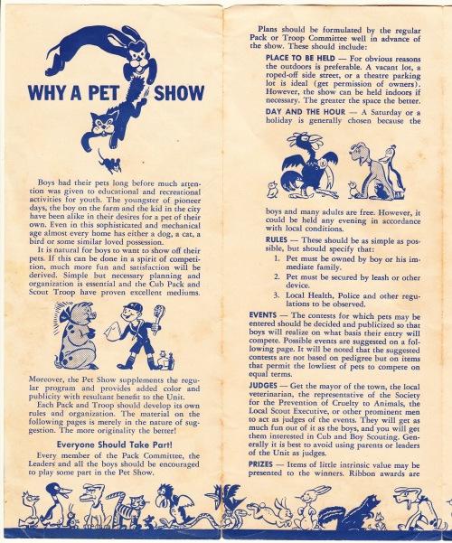 pets-blog-12-dec-2016_0006