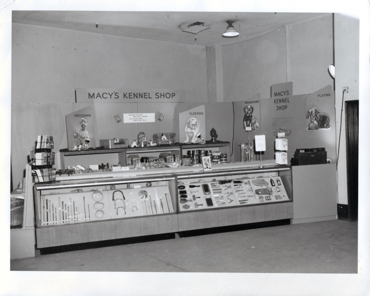 macys-display-westminster-1956.jpeg