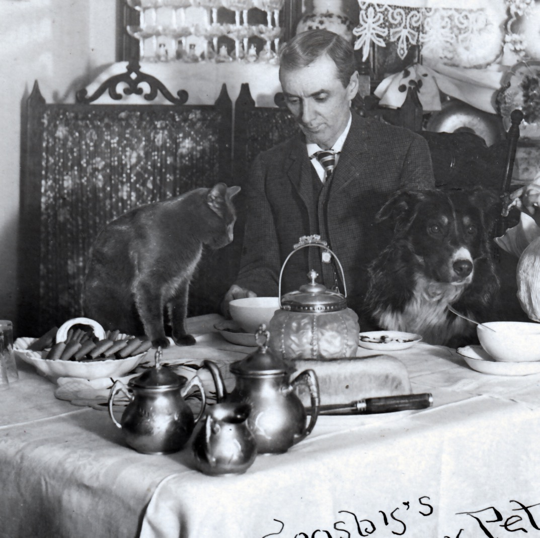 Crosby's Hungry Pets rppc detail